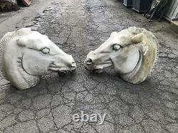 Elgin Marble Horse Head Carving relic Of a horse bust Solid Marble bust PAIR